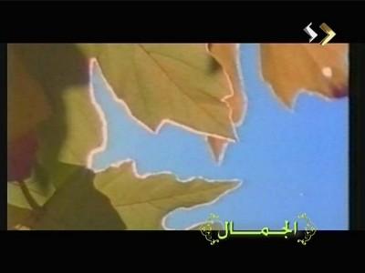 تردد قناة ليبيا الرياضية , قناة Libya Al Riadhia