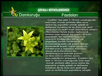 ���� S Yildiz TV //���� ����� ������ //Turksat 2A 42.0�E